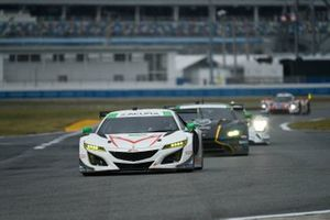 #44 Magnus with Archangel Acura NSX GT3, GTD: John Potter, Spencer Pumpelly, Andy Lally, Mario Farnbacher