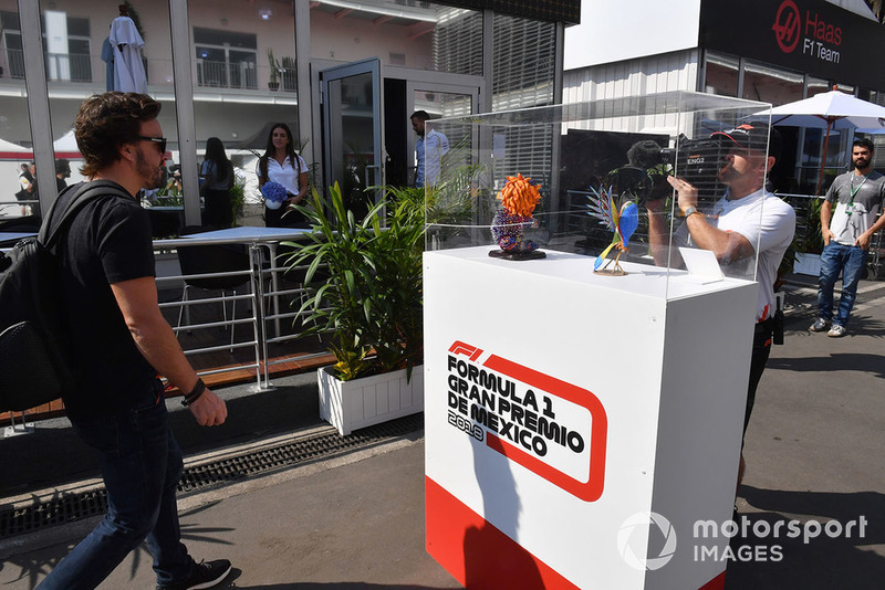 Fernando Alonso, McLaren at drivers display