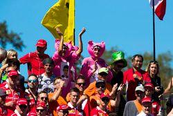 Des fans de Force India, habillés en panthères roses, dans les tribunes