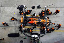 Stoffel Vandoorne, McLaren MCL32, maakt een pitstop