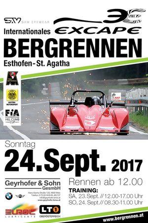 Esthofen-Sankt Agatha, Affiche 2017