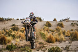 #27 Honda: Martin Dupleissis