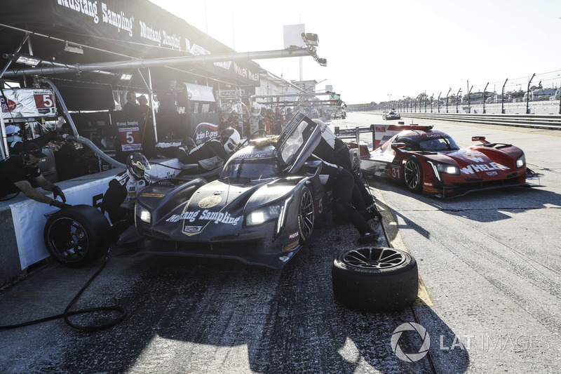 #5 Action Express Racing Cadillac DPi, P: Joao Barbosa, Christian Fittipaldi, Filipe Albuquerque, pit stop, #31 Action Express Racing Cadillac DPi, P: Eric Curran, Mike Conway, Felipe Nasr