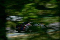 #11 Blackdog Speed Shop Chevrolet Camaro GT4: Tony Gaples, Michael Cooper