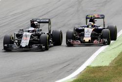 Zweikampf: Fernando Alonso, McLaren MP4-31; Carlos Sainz Jr., Scuderia Toro Rosso STR11