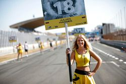 Grid girl of Julian Hanses, ma-con Dallara F317 - Volkswagen