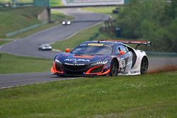 #93 RealTime Racing, Acura NSX GT3: Peter Kox, Mark Wilkins