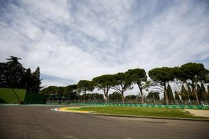 Trees by the chicane