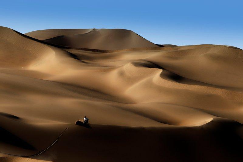 La foto ganadora de 2011 -FRANCOIS FLAMAND, DPPI