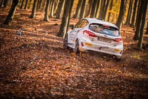 Ken Torn, Kari Pannas, Ford Fiesta Rally4