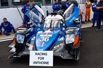 #36 SIGNATECH ALPINE ELF Alpine A470 - Gibson: Andre? Negra?o, Pierre Ragues, Thomas Laurent