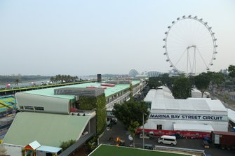 The Singapore Fyler and Paddock preparations