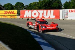 #31 Action Express Racing Cadillac DPi: Felipe Nasr, Pipo Derani