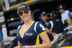 Gridgirls in Goiania
