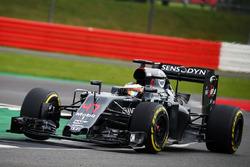 Stoffel Vandoorne, McLaren MP4-31, Test- und Reservefahrer