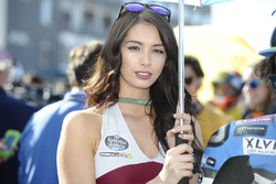 Hot Marc VDS girl