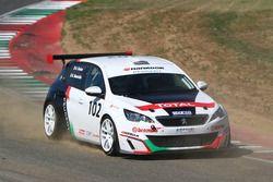 Andrea Farina, Peugeot 308 Racing Cup