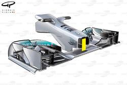 Nez long de la Mercedes W04