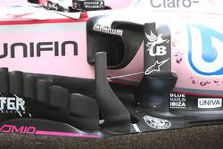 Force India turning vane