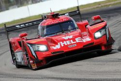 #31 Action Express Racing Cadillac DPi