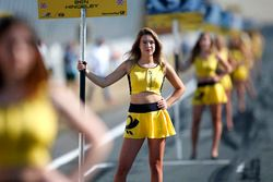 Grid girl of Ben Hingeley, Hitech Bullfrog GP Dallara F317 - Mercedes-Benz