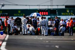 Williams engineers on the grid with Sergey Sirotkin, Williams FW41, prior to the start