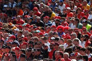 Les fans de Ferrari dans la tribune