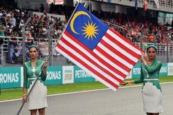 Chicas de la parrilla y bandera de Malasia