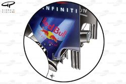 Red Bull RB6 rear wing endplate strakes