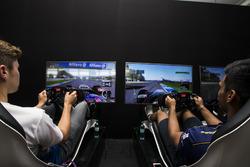 Стейн Схотхорст, Campos Racing и Акаш Нанди, Jenzer Motorsport