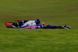 Брендон Хартли, Scuderia Toro Rosso STR12