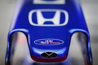 Scuderia Toro Rosso neus