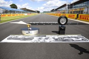 Trophy and Stella Bianca on the grid