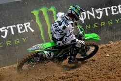 Dylan Ferrandis, Monster Kawasaki MX2