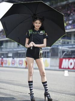 Hot Kawasaki Puccetti Racing girl