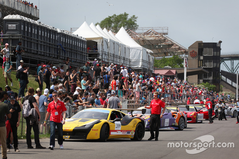 #209 Scuderia Corsa - Ferrari Westlake: Oscar Paredes-Arroyo