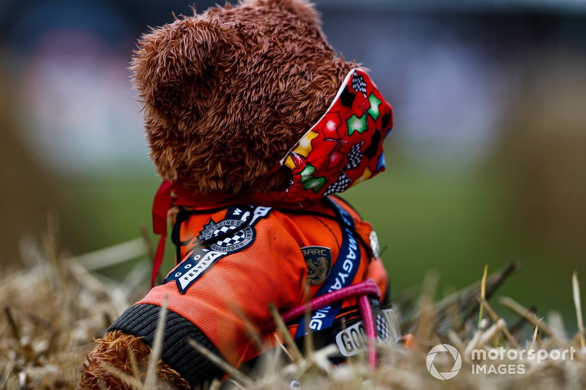 Un oso Teddy