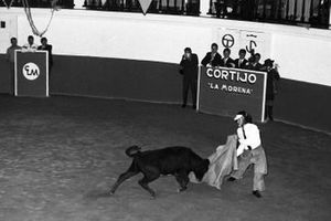 Jim Clark, Team Lotus tries his hand at bull fighting