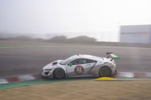 #44: Magnus con Arcangelo Acura NSX GT3, GTD: John Potter, Andy Lally