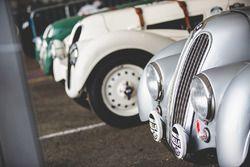 BMW klasik araçları