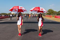 Honda grid girls