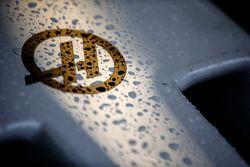 De la pluie sur le nez d'une Haas F1 Team VF-17