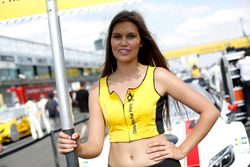 Grid girl of Felix Rosenqvist, Mercedes-AMG Team ART, Mercedes-AMG C 63 DTM DTM