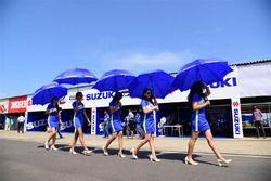 Lovely Suzuki grid girls