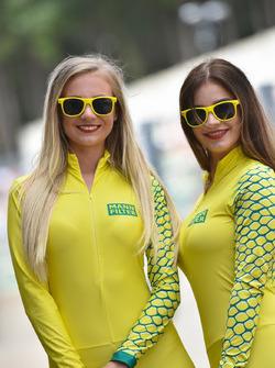 MannFilter girls