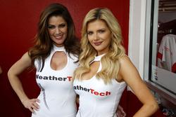 Прекрасные девушки WeatherTech