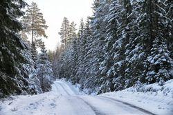 Winter: Verschneite Pisten bei der Rallye Schweden