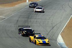 #224 Ron Tonkin Gran Turismo Ferrari 458: Trevor Baek
