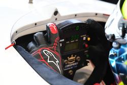 Zsolt Baumgartner, experiencia F1 Coche de 2 plazas volante