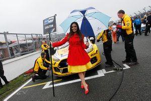 Grid girl of Tom Chilton, Motorbase Performance Ford Focus
